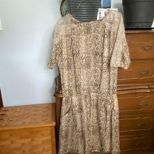 BCBG Silk Python print Dress